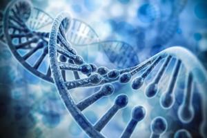 Gene – thủ phạm gây tự kỷ